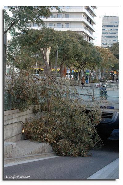 2009-01-24-164940_ventada