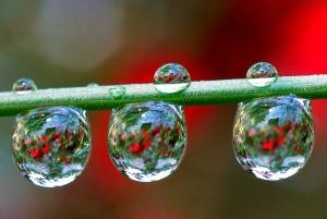 galería gotas de Agua